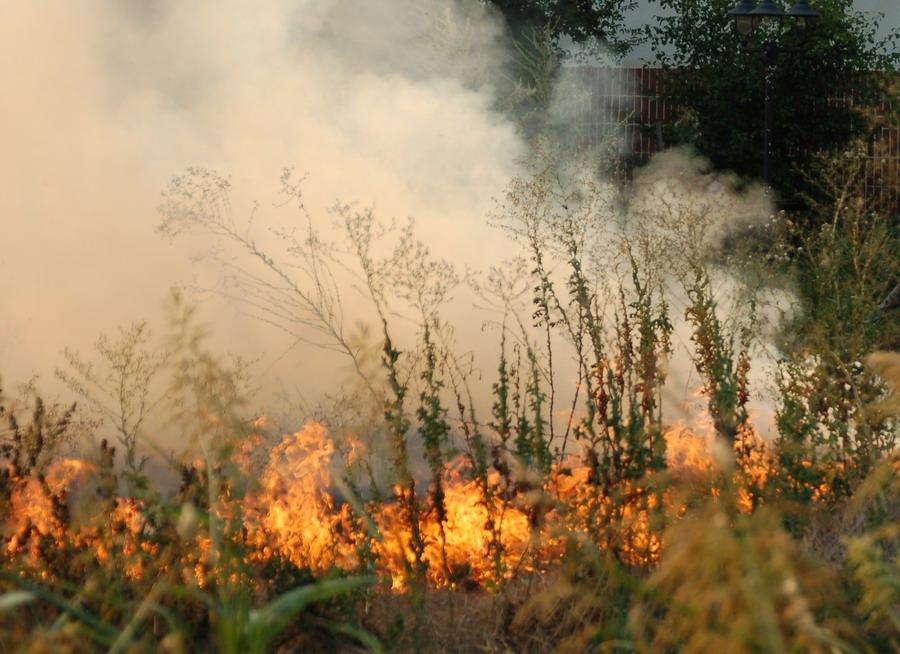 incendiu-6.jpg