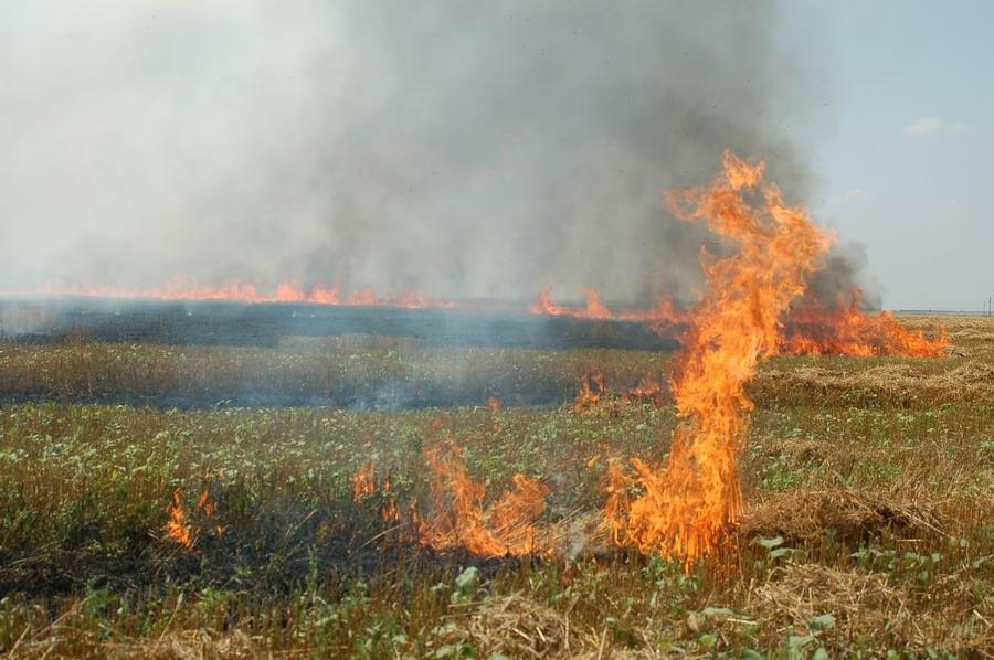 incendiu-jegalia-1.jpg