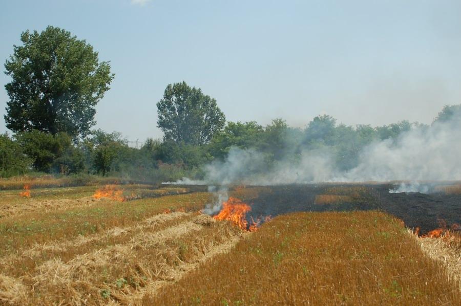 incendiu-jegalia-3.jpg