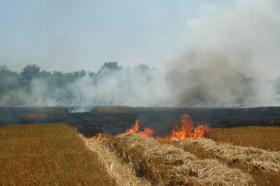 incendiu-jegalia-4.jpg