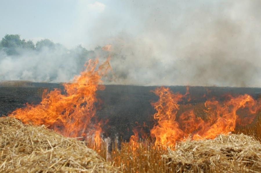 incendiu-jegalia-5.jpg