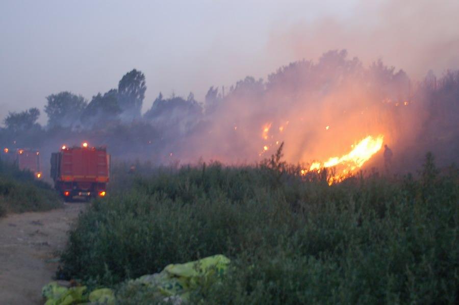 incendiu-la-bora-1_0.jpg