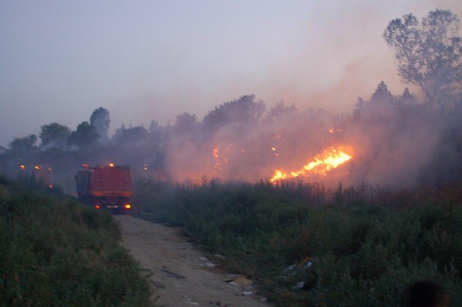incendiu-la-bora-2_0.jpg