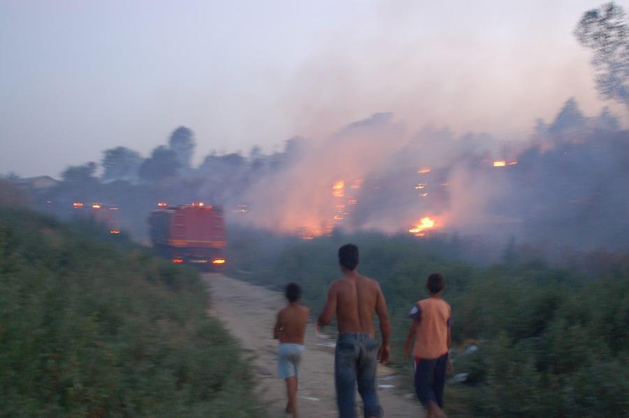 incendiu-la-bora-3_0.jpg