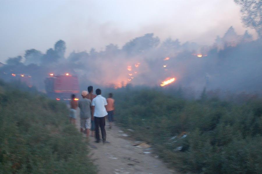 incendiu-la-bora-4_0.jpg