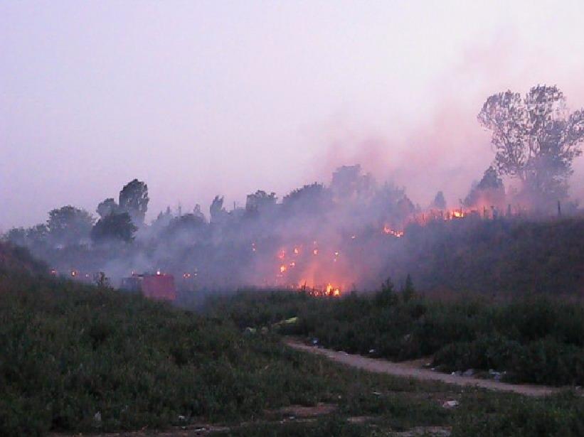 incendiu-la-bora-5_0.jpg