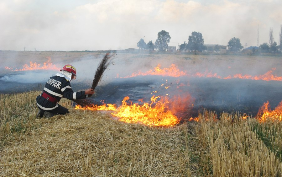 incendiu-langa-combinat-3.jpg