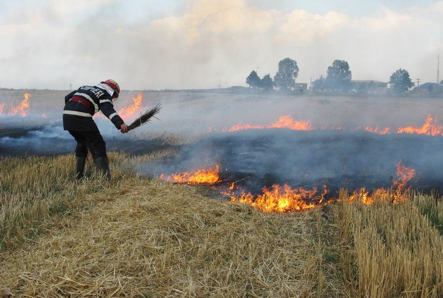 incendiu-langa-combinat-4.jpg