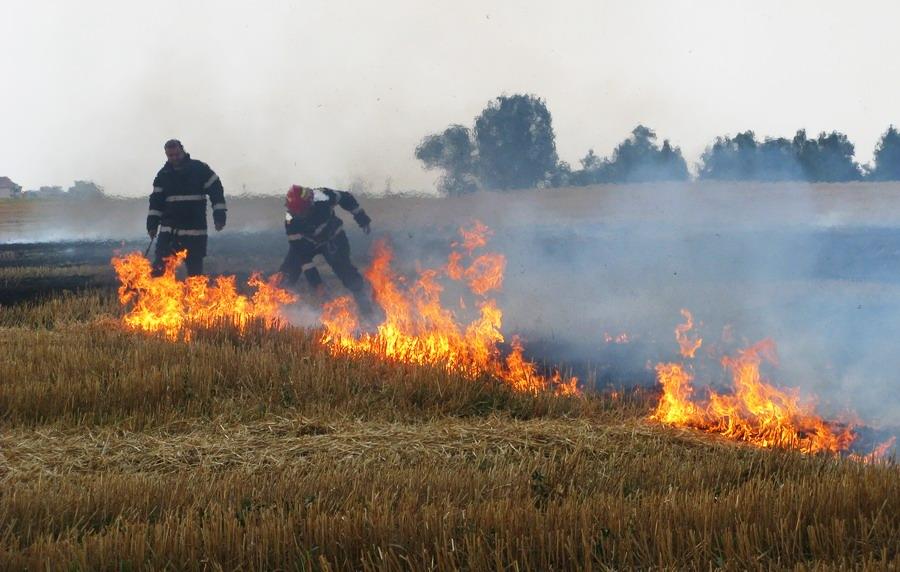 incendiu-langa-combinat-5.jpg