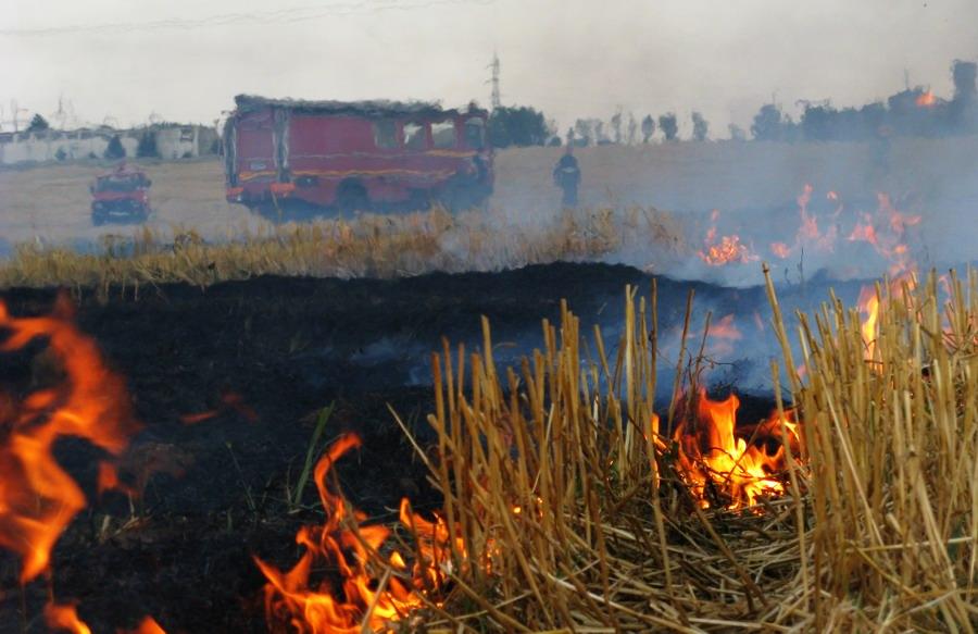 incendiu-langa-combinat-7.jpg