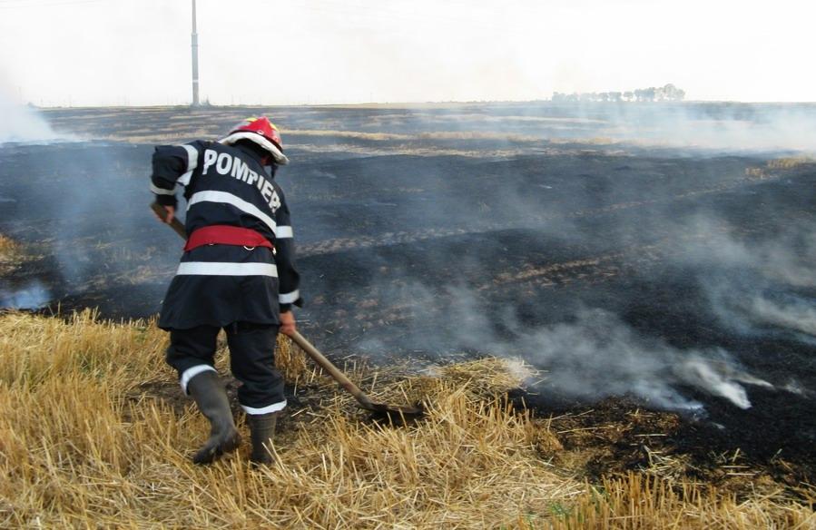incendiu-langa-combinat-8.jpg