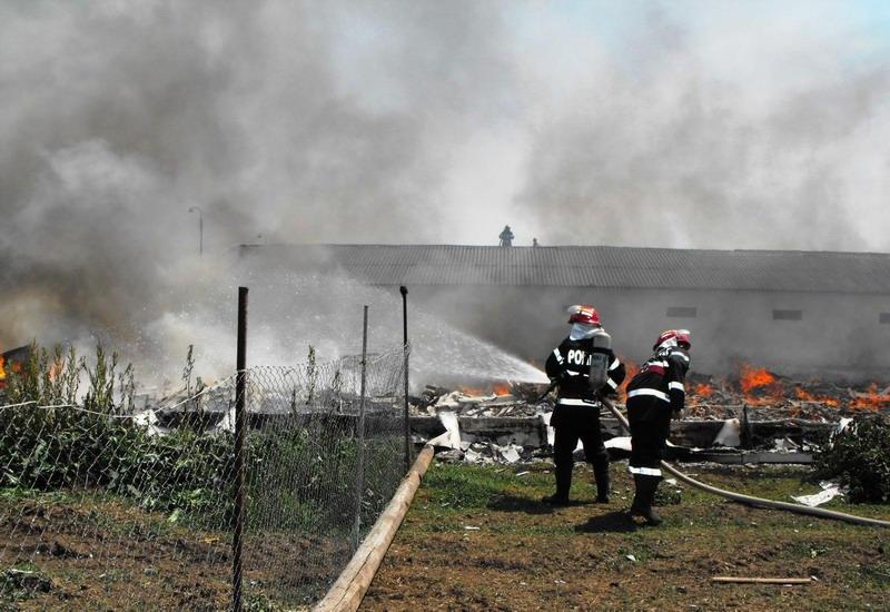 incendiu-manasia-2.jpg
