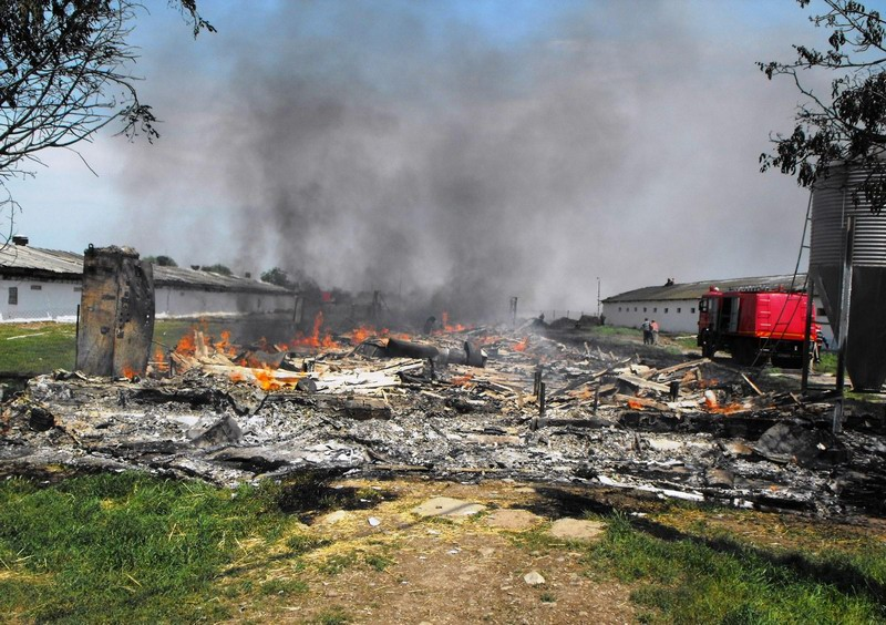 incendiu-manasia-3.jpg