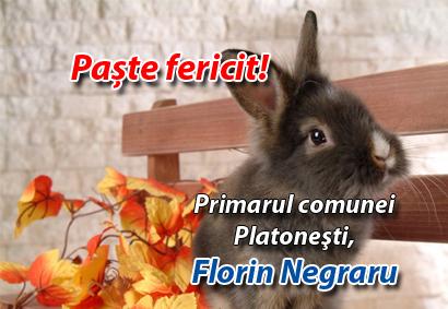 Florin Negraru