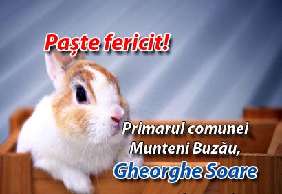 Gheorghe Soare