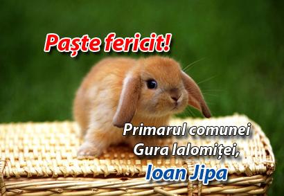 Ioan Jipa