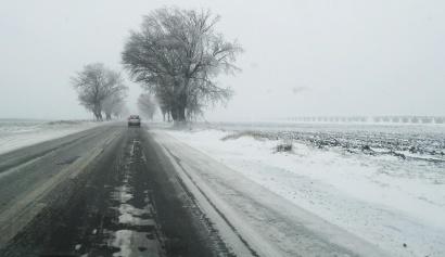 ninsoare-18-ianuarie