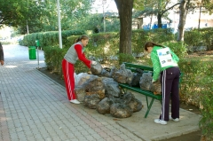 parc-e14-2.jpg