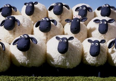 oi europene subventie Oi capre