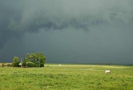 ploaie si furtuni in ialomita recolta ploaie pagube ialomita