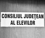 Consiliul Judetean al Elevilor