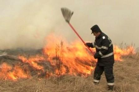 incendiu_vegetatie