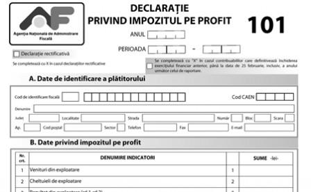 anexa_formularul_101_declaratia_privind_impozitul_profit_pag1