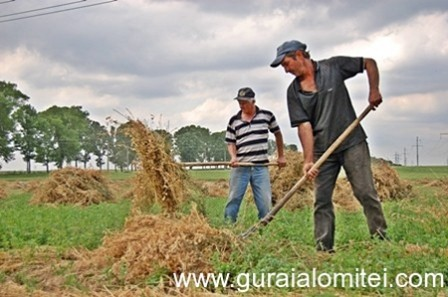 venituri-agricultura