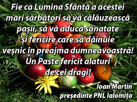 _Ioan Martin