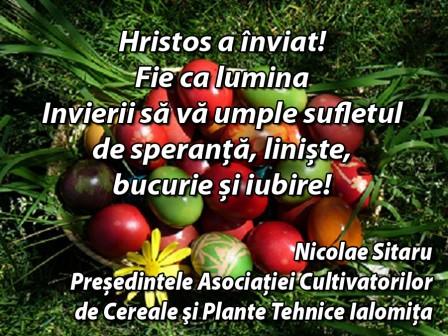_Nicolae Sitaru