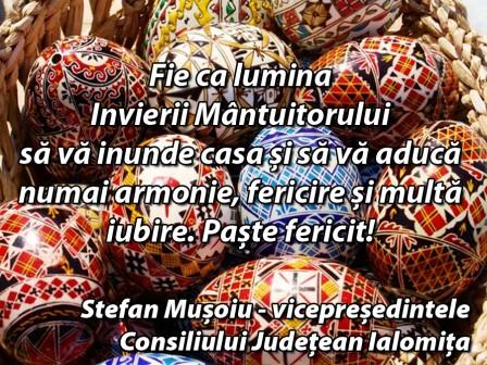 _Stefan Musoiu