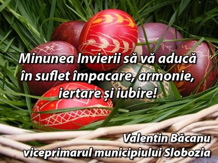 _Valentin Bacanu