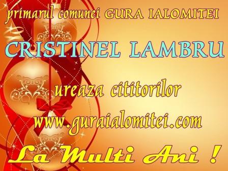 cristinel lambru