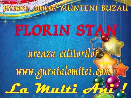 florin stan